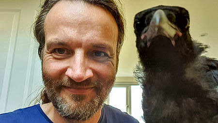 Kristian Franze with his foster crow Nönö.